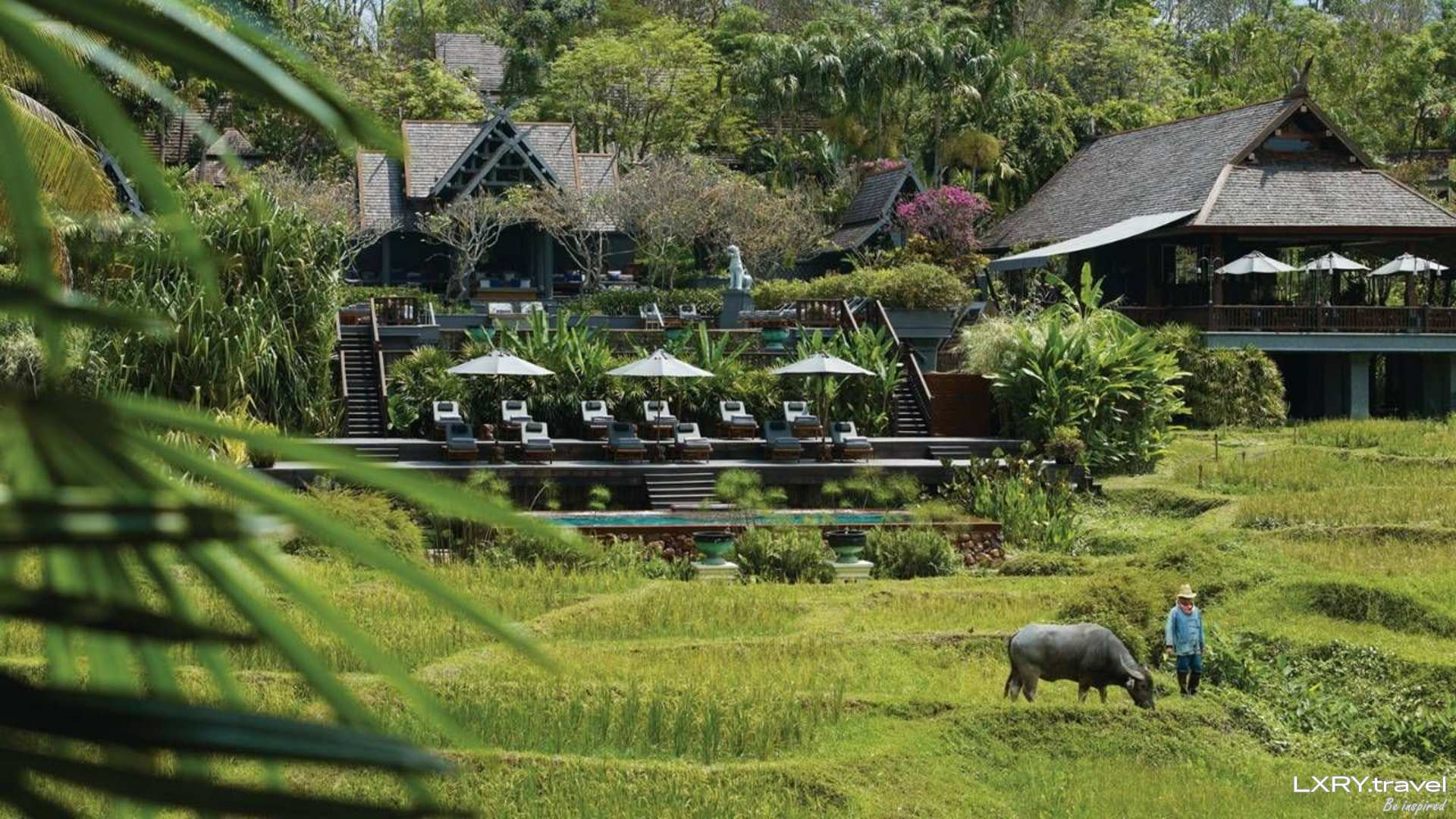 Four Seasons Resort Chiang Mai 8/48