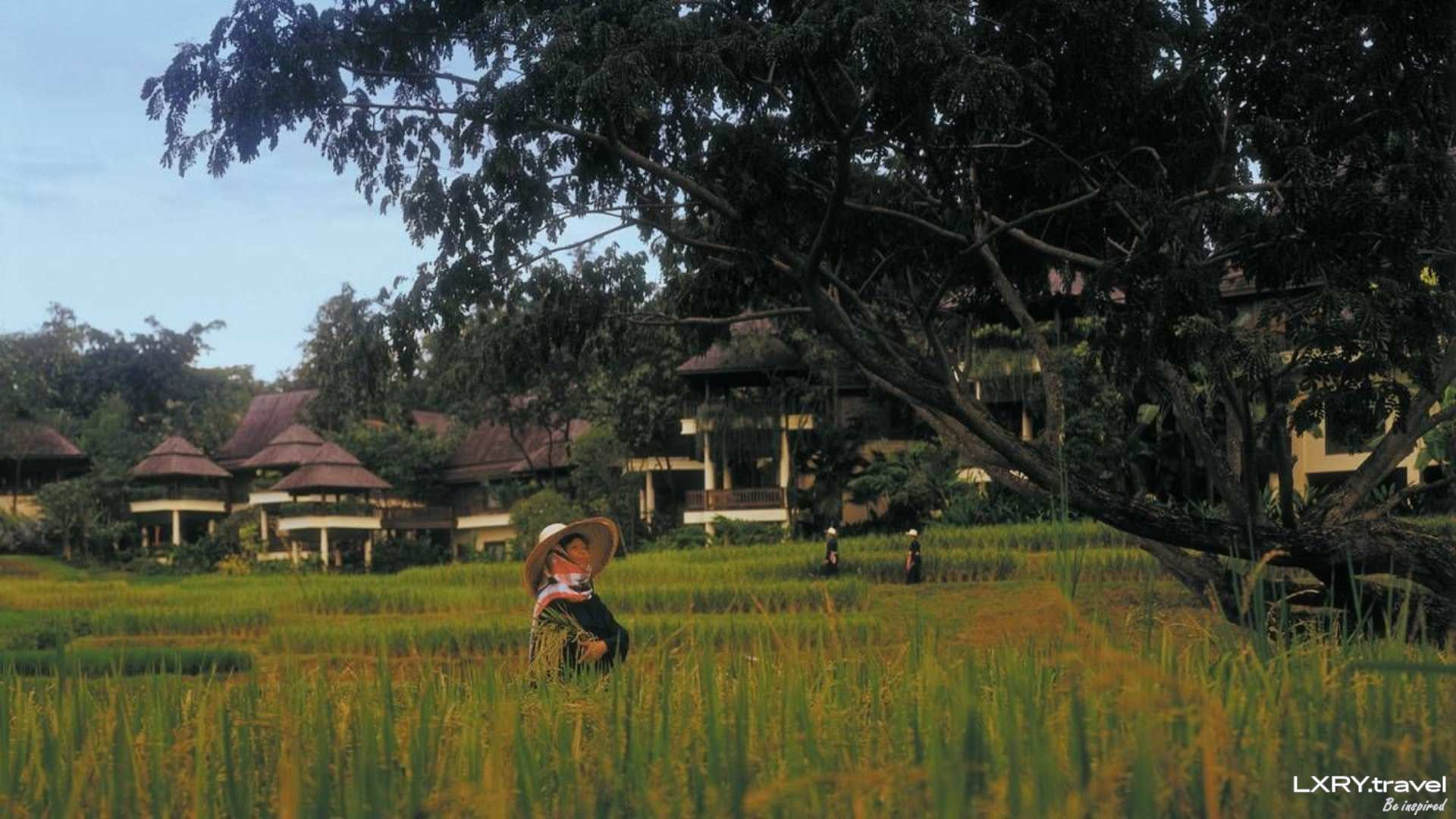Four Seasons Resort Chiang Mai 30/48